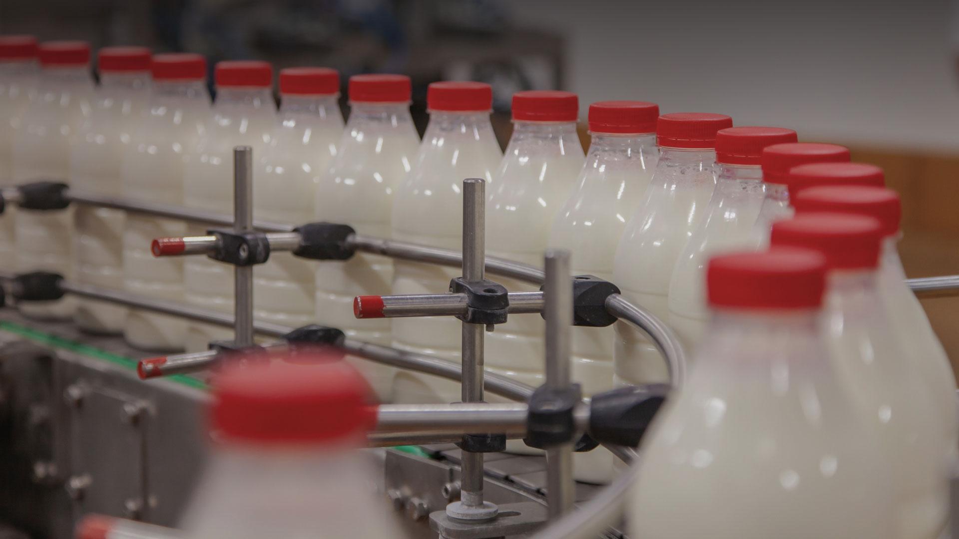 Собственное производство молочных продуктов